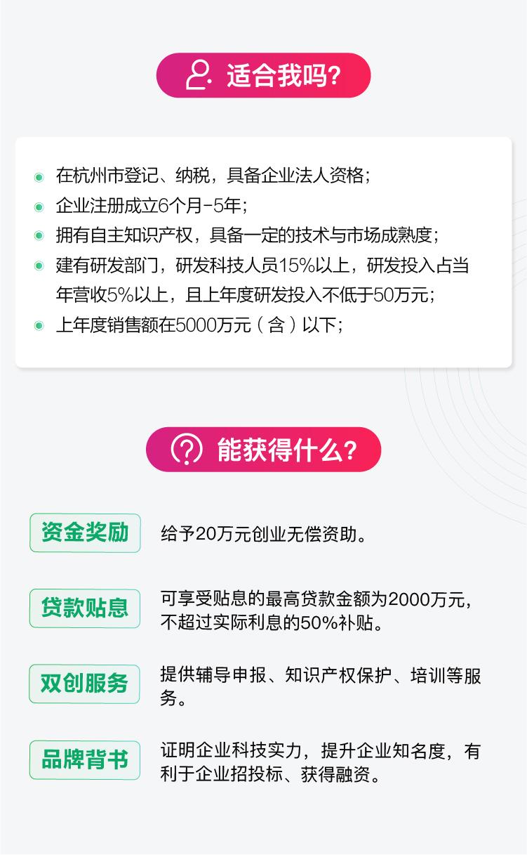 杭州市雏鹰计划1.jpg