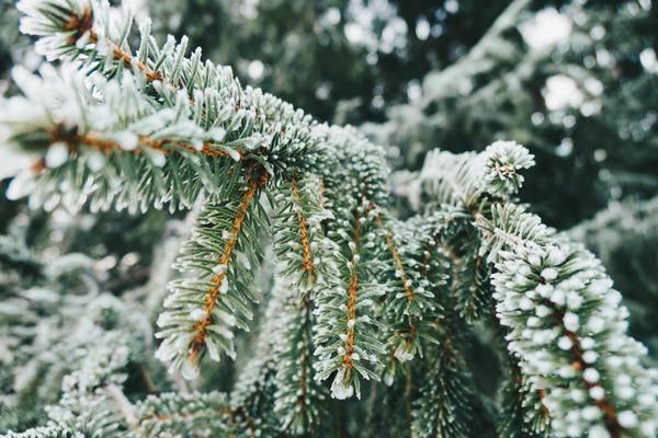 【企服观察】为什么2018对ToB企业来说不是寒冬?
